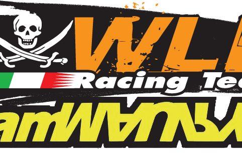 Ecco svelati i loghi per il WLB Tour 2010